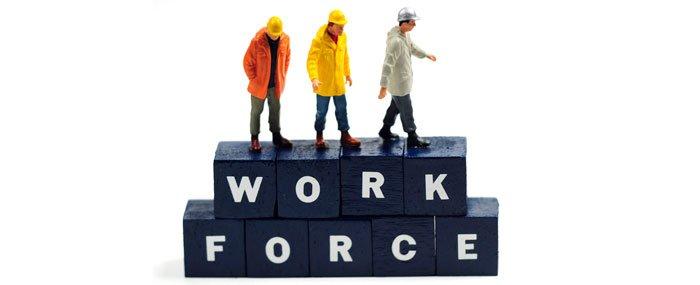 work force display